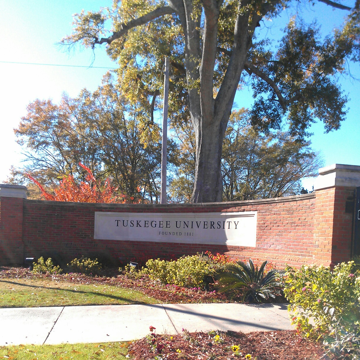 Mother Tuskegee.  My alma mater.